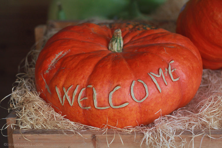 courges_ferme_welcome