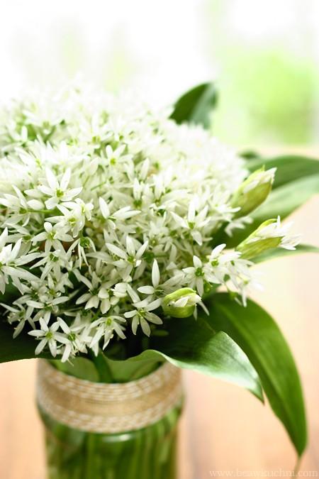 czosnek_niedzw_kwiaty