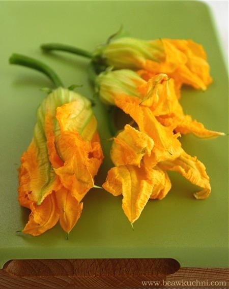 fleurscourgettes001