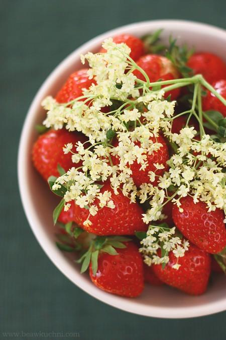 fraises_sureau01