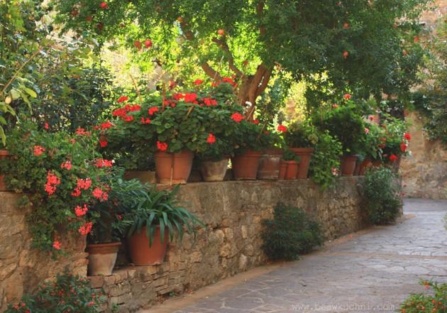 jardin_pienza