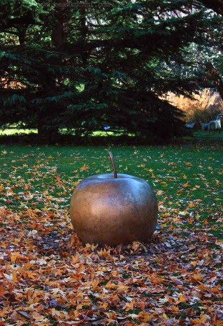 jesien_jablko
