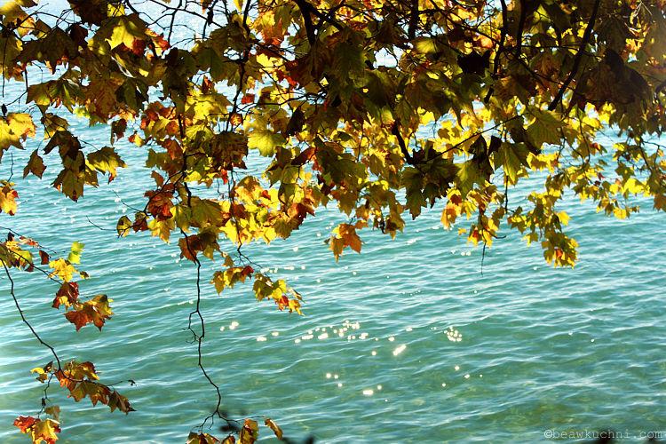 jesien_jezioro