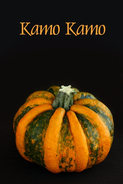 kamo_kamo2011