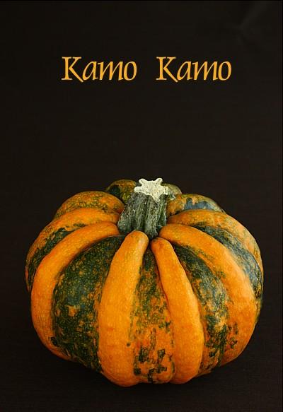 kamokamo