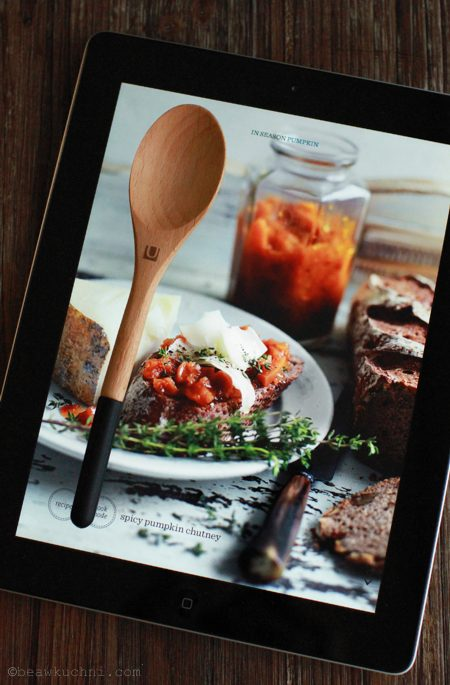 lyzka_iPad