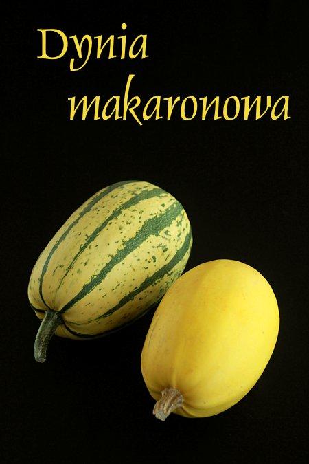 makaronowa