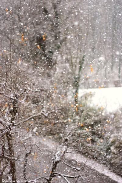 neige2_2012