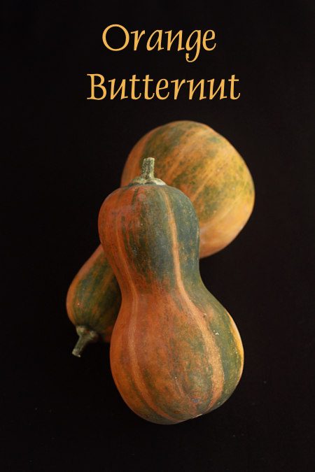 orange_butternut