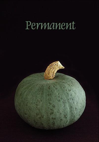 permanent2