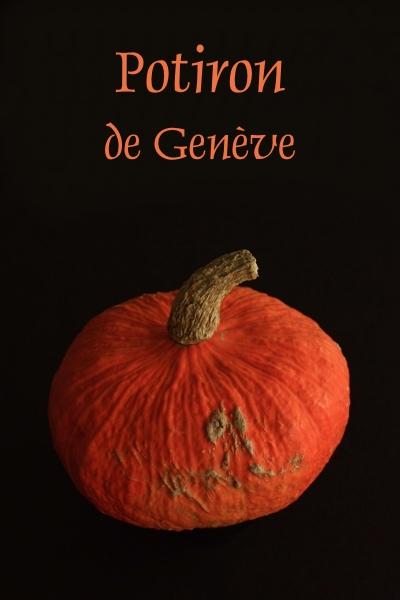 potiron_geneve