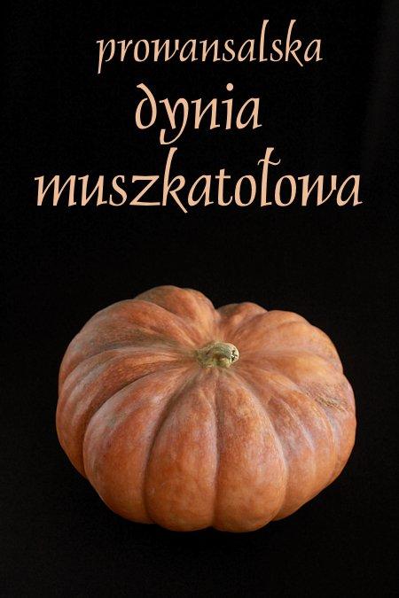 prowansalska_muszkatolowa