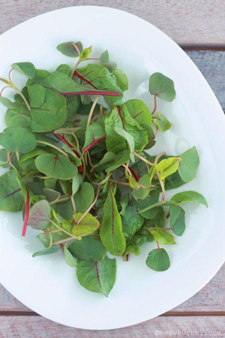 salades_mix2