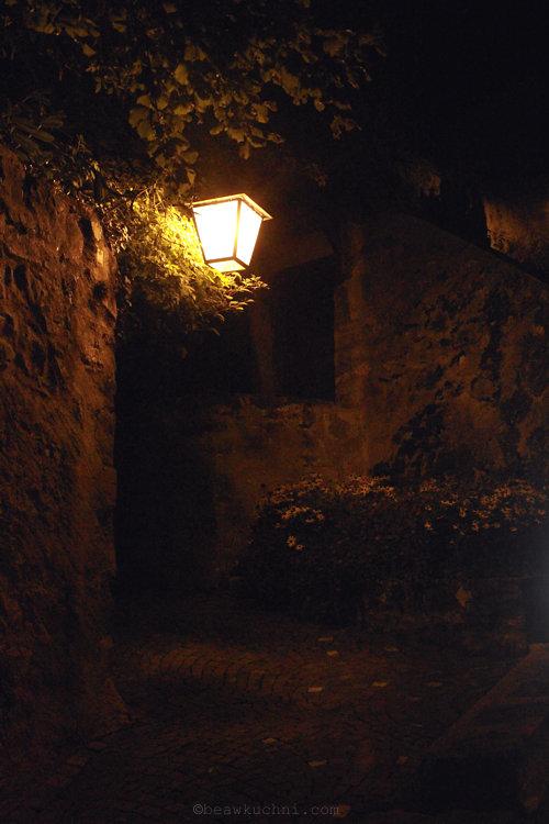 vignes_nuit3