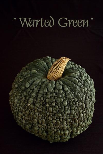 wartedgreen
